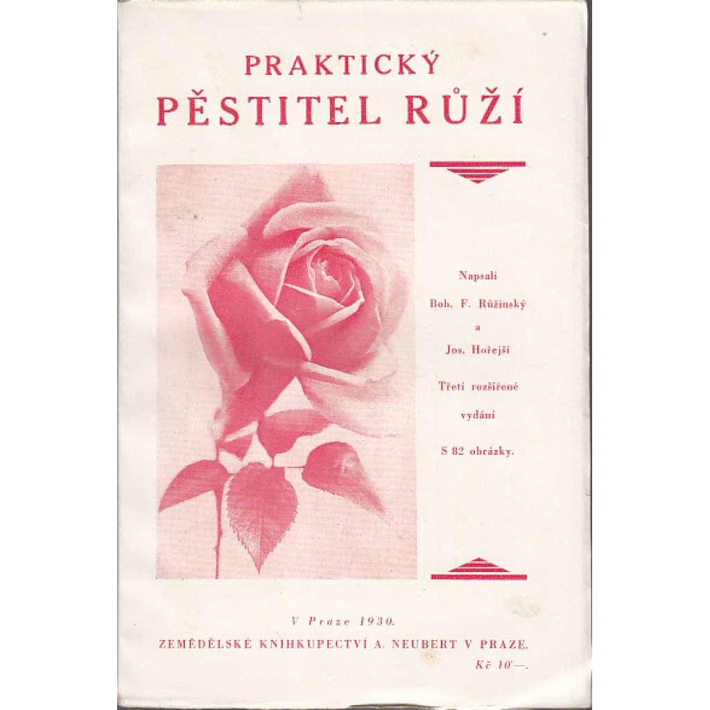 Praktický pěstil růží