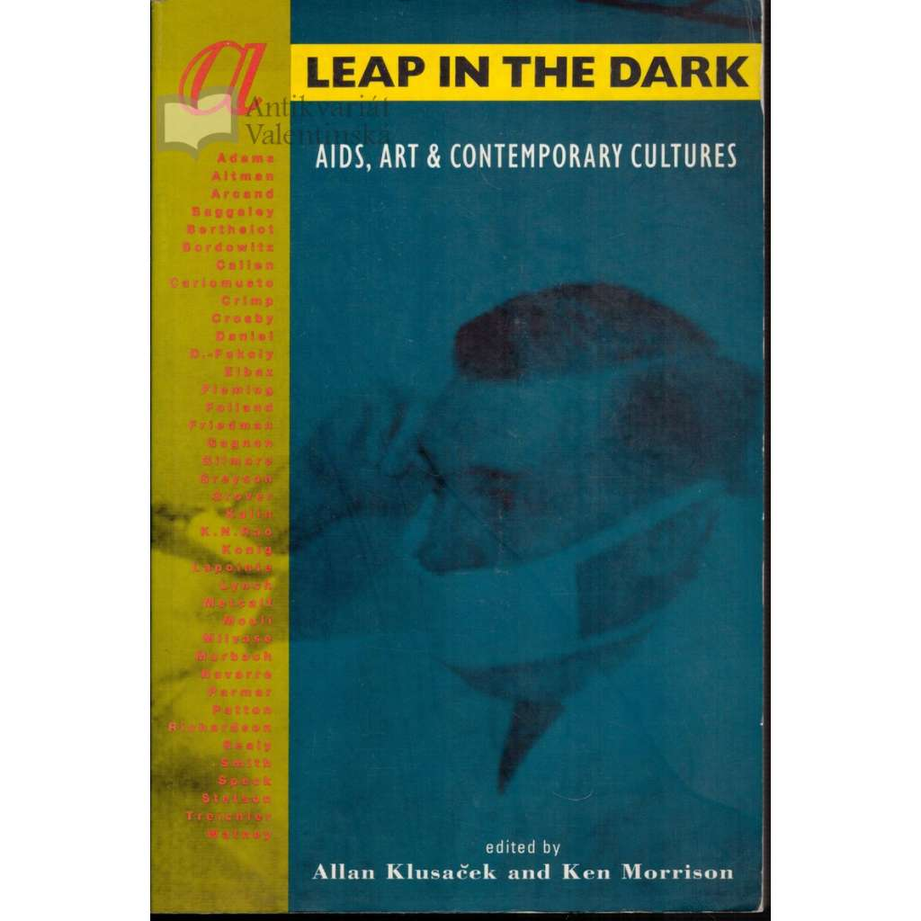 A Leap in the Dark: AIDS, Art & Contemporary Cultures