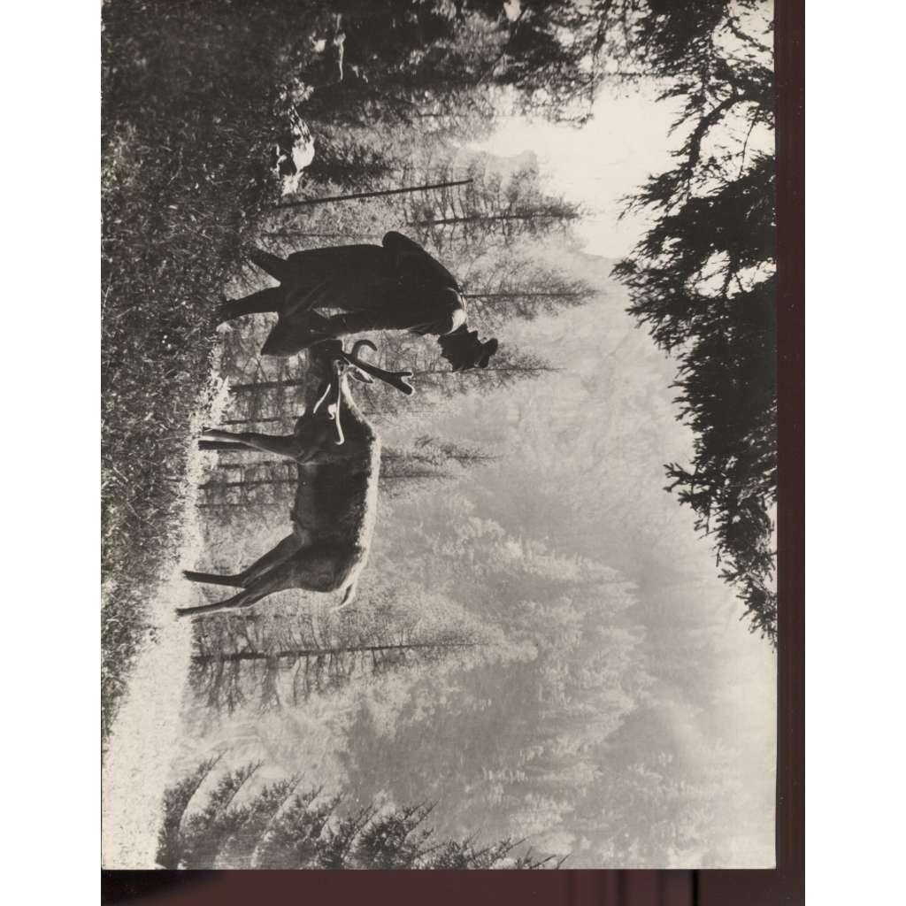 Fotoska - film Lesník ze Stříbrného lesa (A. Stummer)