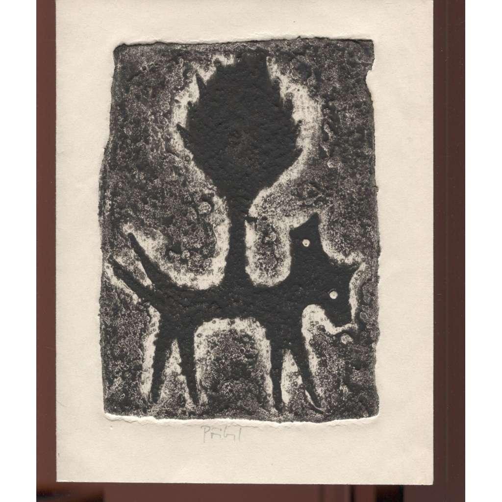 Siamský pes -černá varianta (materiálový tisk)