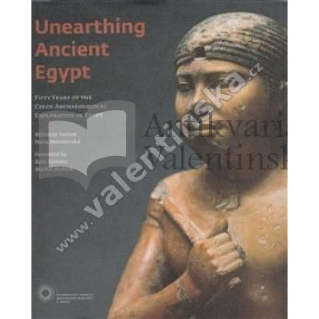 Unearthing Ancient Egypt