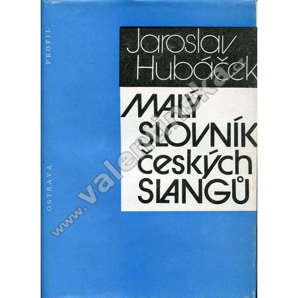 Malý slovník českých slangů (slang, slangy, jazykověda)