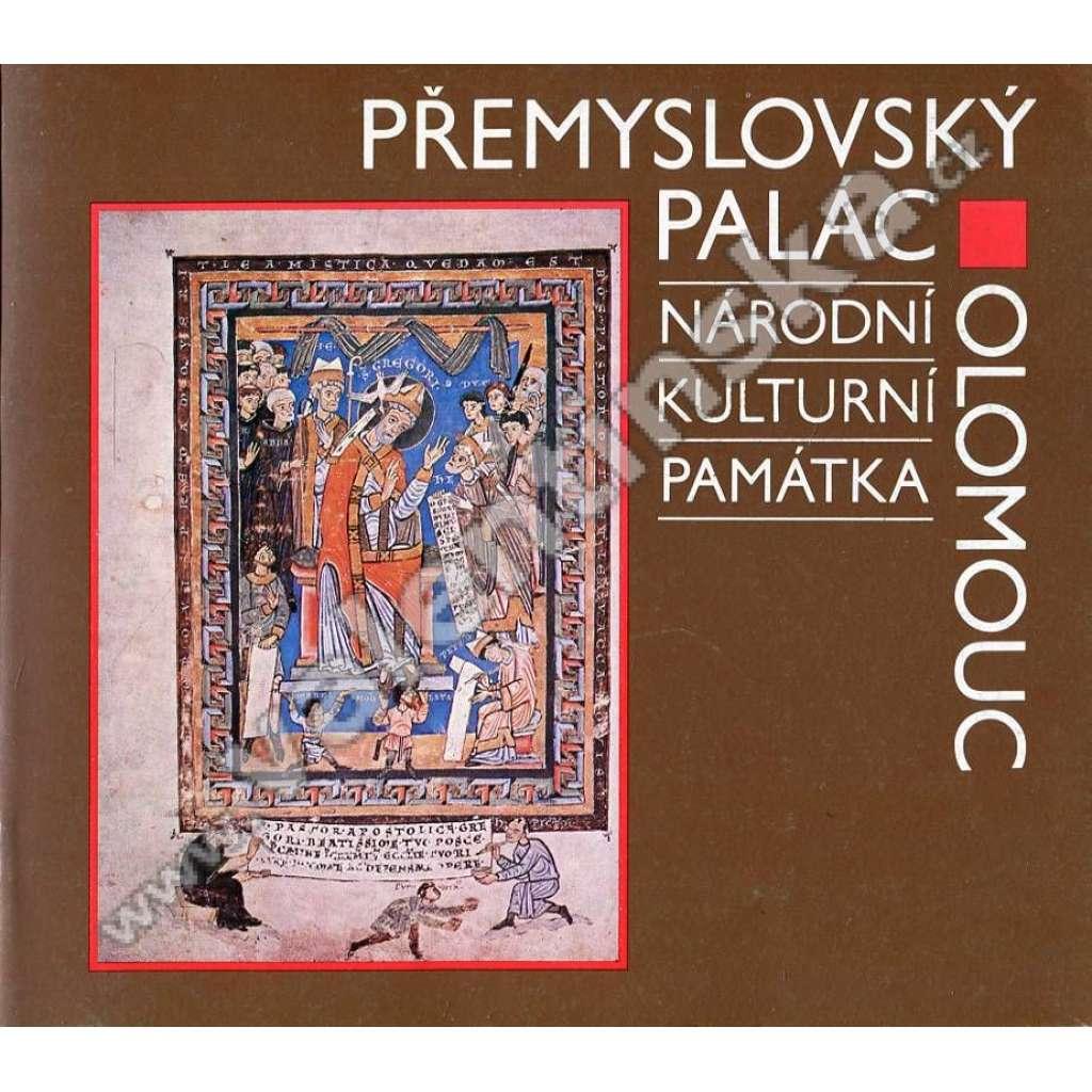 Přemyslovský palác v Olomouci (průvodce)