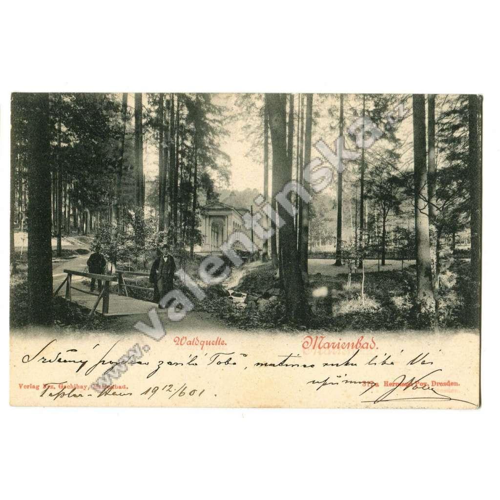 Mariánské Lázně, Cheb, lesní pramen