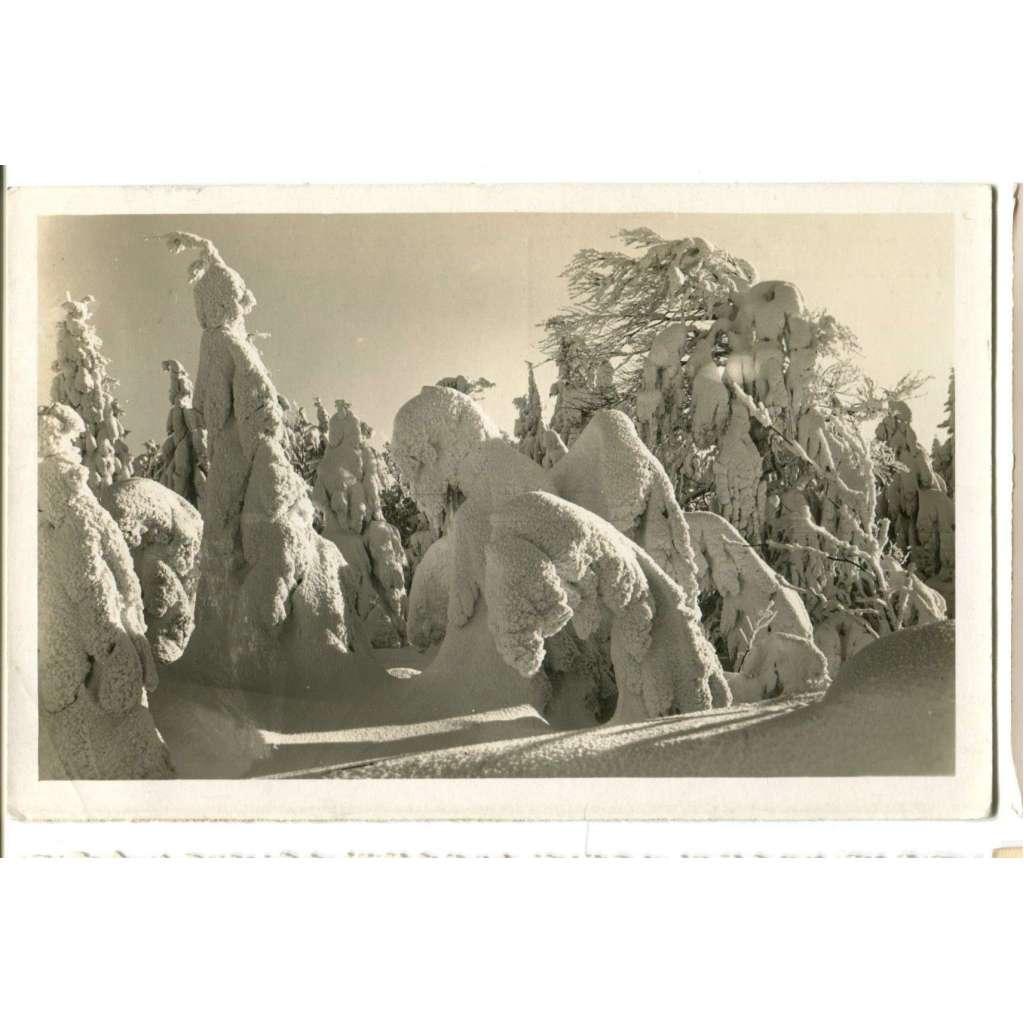 Olešnice - okolí Vrchmezí, Rychnov nad Kněžnou, Orlické hory