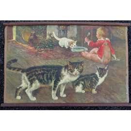 Kočka - koťata - školní plakát