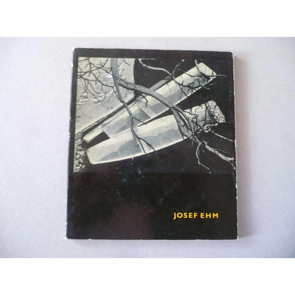 Josef Ehm. Umělecká fotografie, svazek 8
