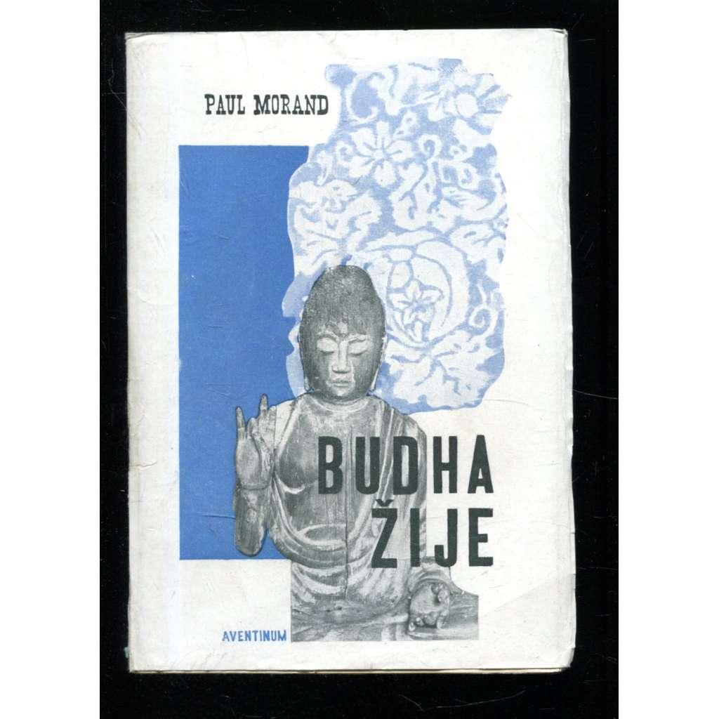 Budha žije (obálka fotomontáž)