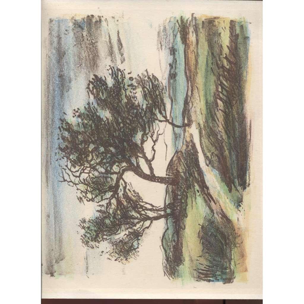 Krajina ve větru (litografie)