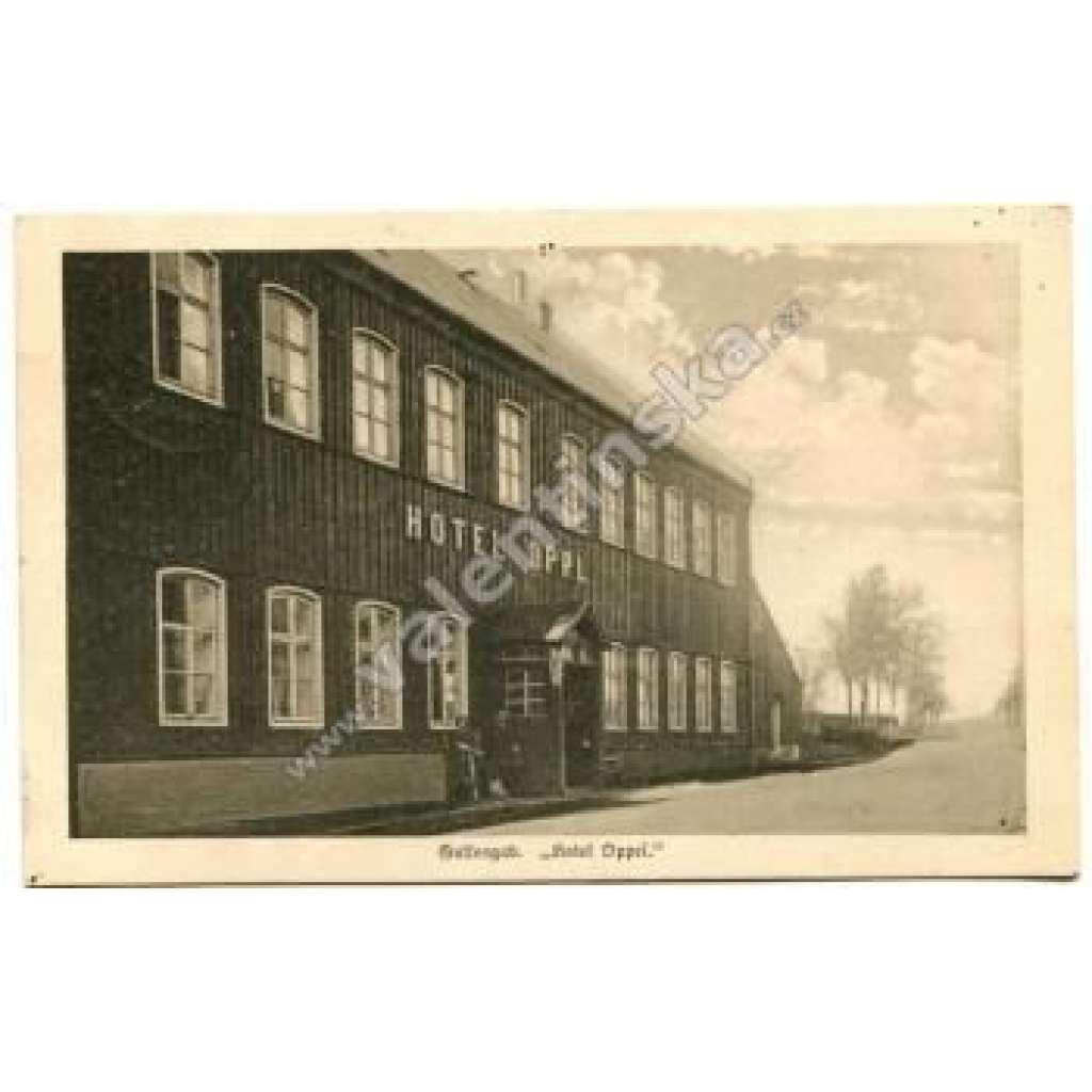 Boží Dar Gottesgab, Karlovy Vary, Hotel Oppel, Krušné hory