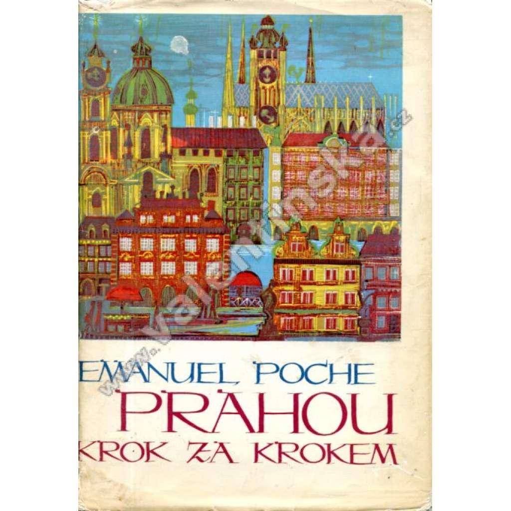 Prahou krok za krokem. Uměleckohistorický průvodce městem (architektura Prahy, historie, umění)