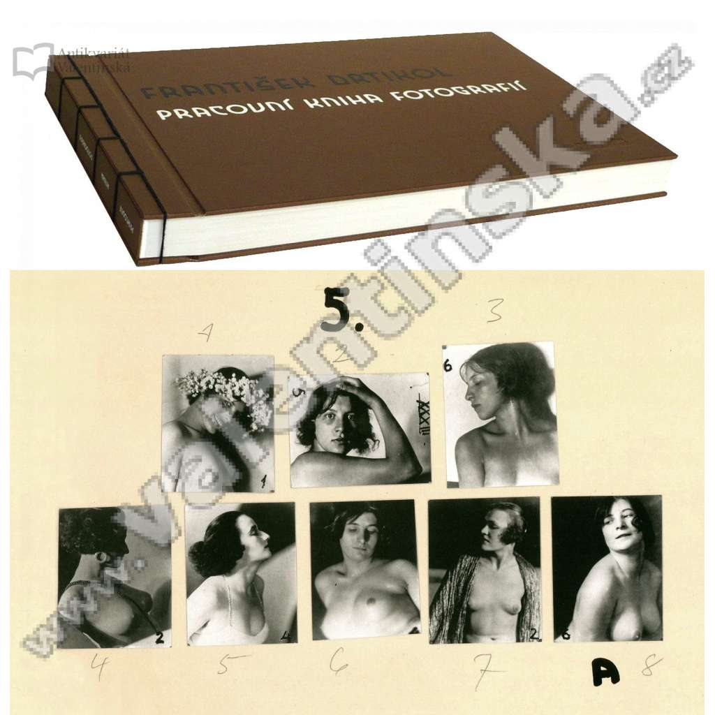 Pracovní kniha fotografií