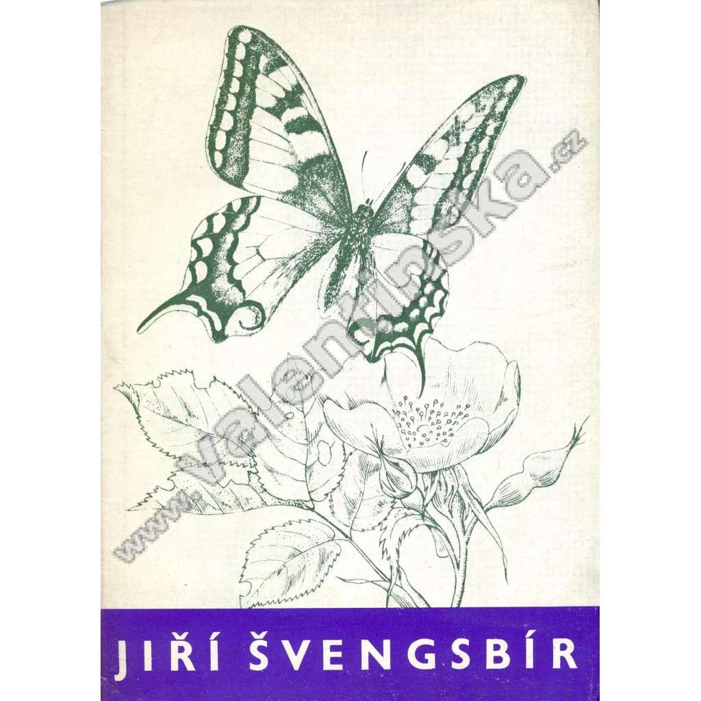 Jiří Švengsbír: Grafika