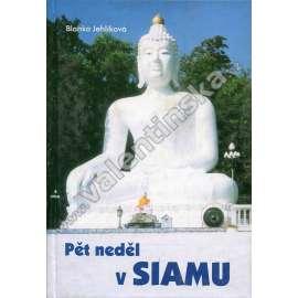 Pět neděl v Siamu