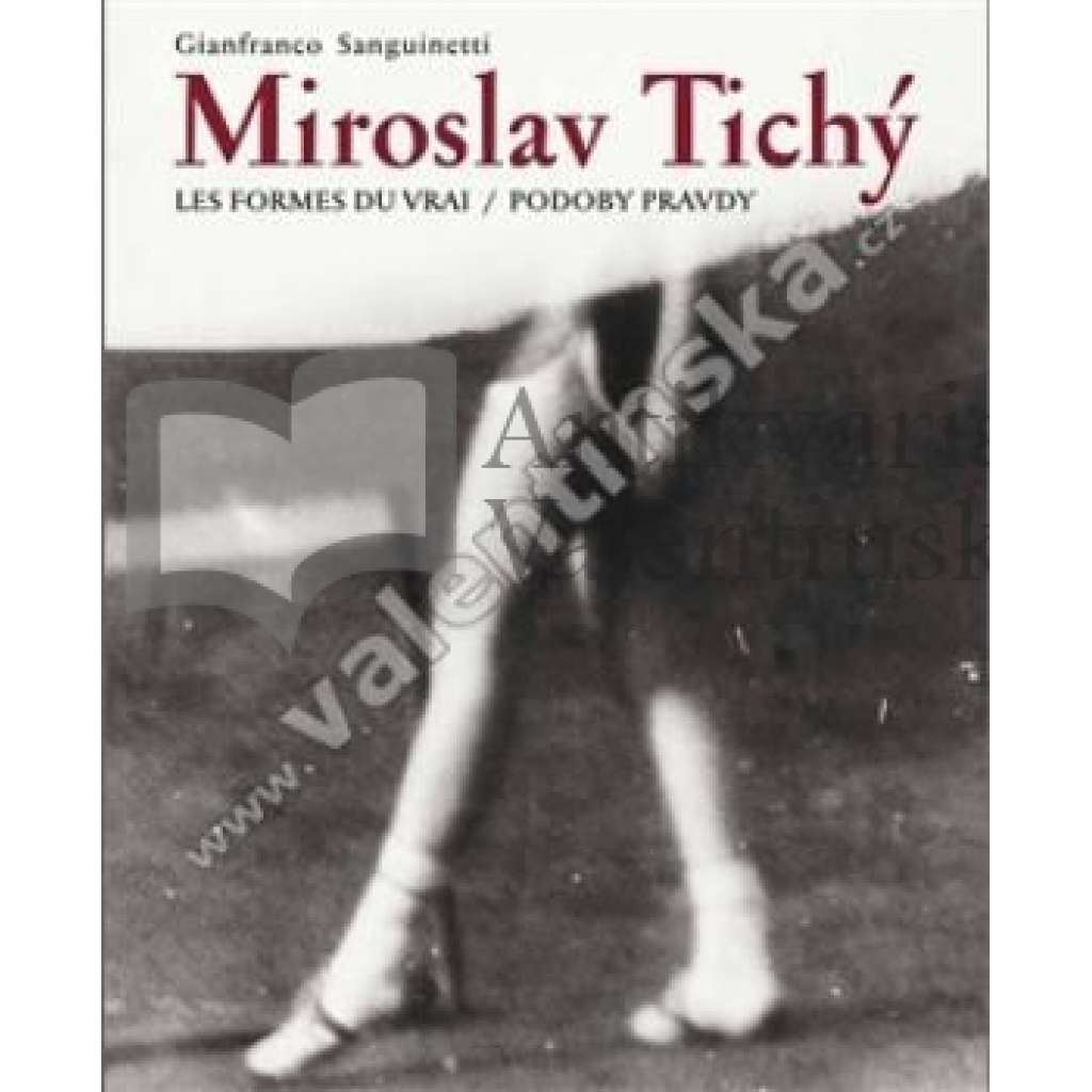 Miroslav Tichý: Podoby pravdy (Les formes du vrai)