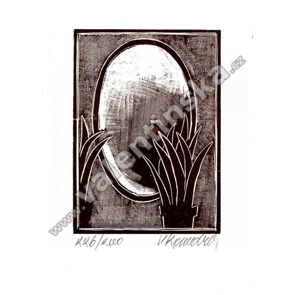 Signovaný dřevoryt * Zrcadlo