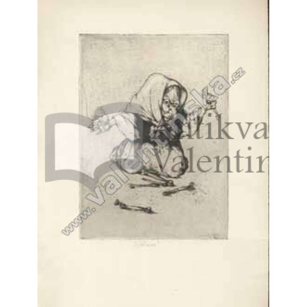 Baba Jaga-suchá jehla (230x170)