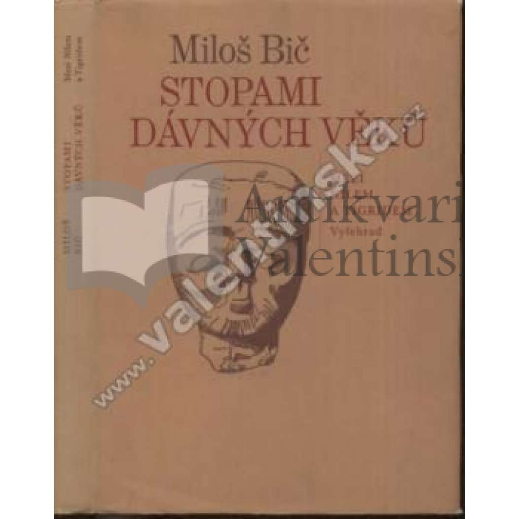 Stopami dávných věků. Mezi Nilem a Tigridem. Dějiny Mezopotámie, Sumer, Asýrie, Babylón, Přední Východ, Irák, Jordánsko
